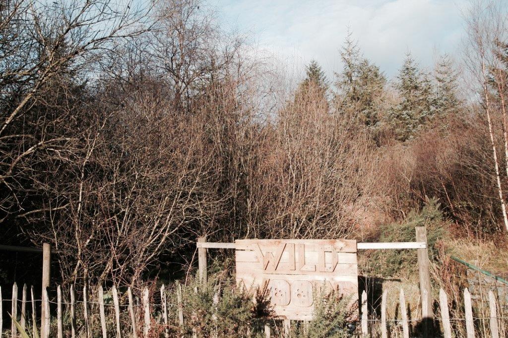 elainesrovesntroves-an-creagan-wild-woods-adventure