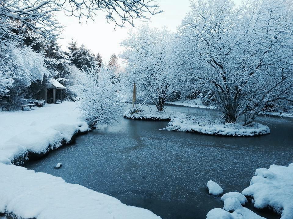 Winter Wonderland Wilderness Getaway