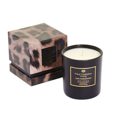 Paul Costelloe Candle pomegrante elainesrovesntroves.jpg
